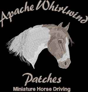 EmbroideredProjects/Apache-Whirlwind.jpg