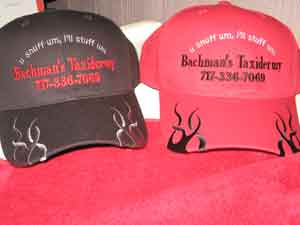 EmbroideredProjects/Bachmans-hat.jpg